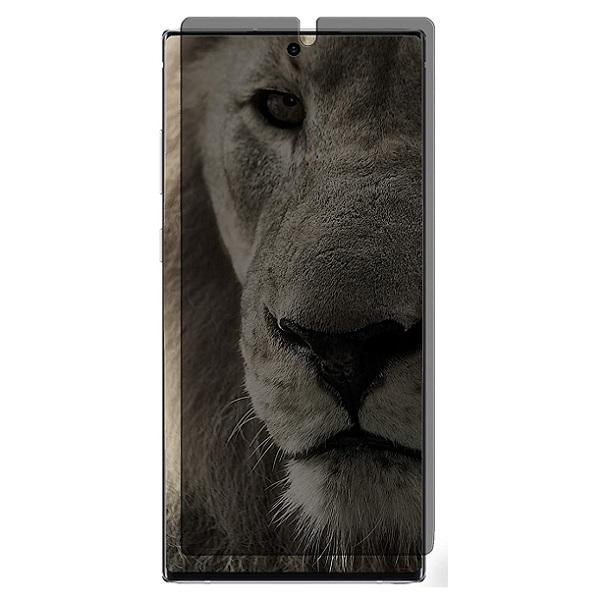 خرید محافظ صفحه سرامیکی پرایوسی گوشی سامسونگ گلکسی نوت 10 پلاس